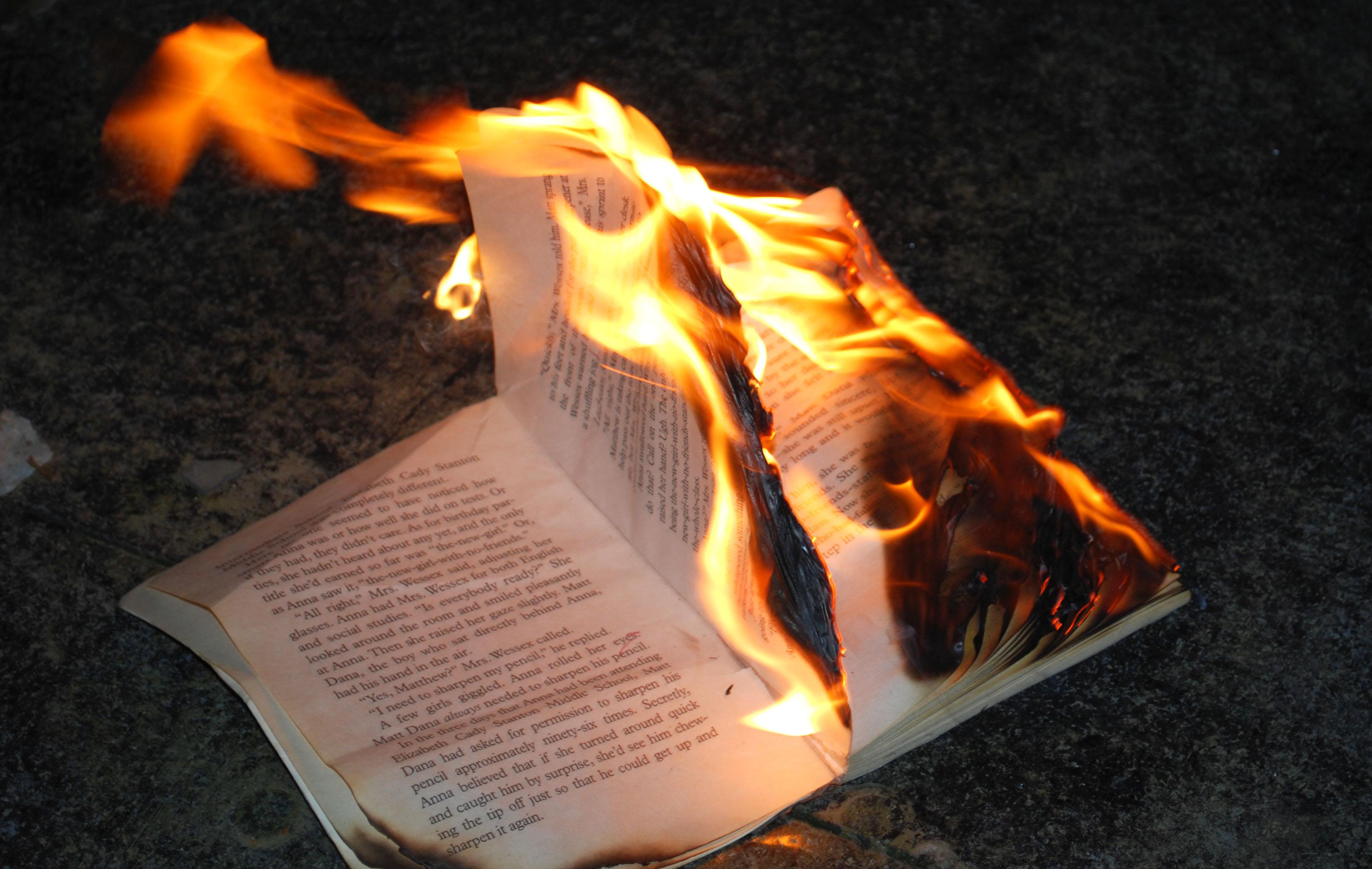 El d a que el diputado lara quem libros entre r os ahora - Libros para relajar la mente ...